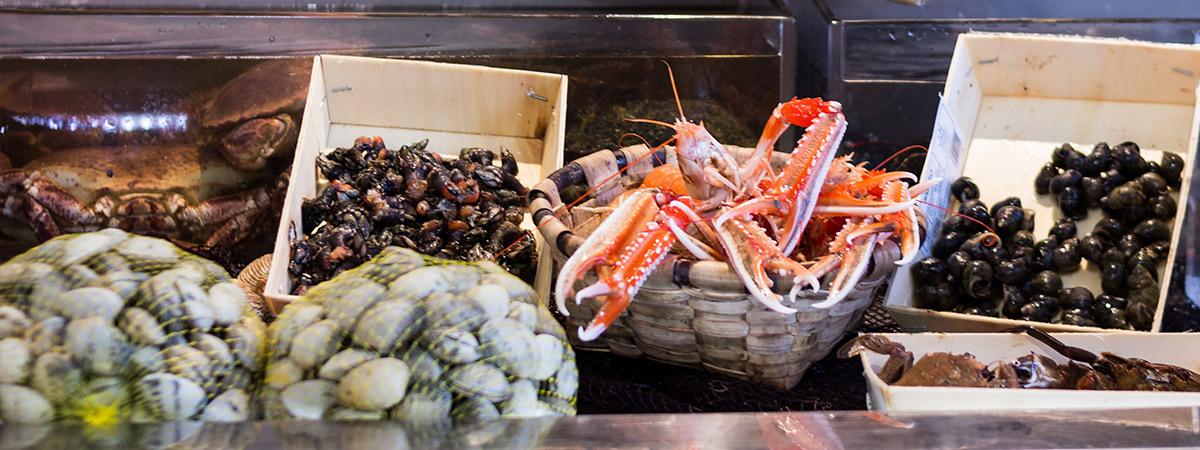 comer marisco