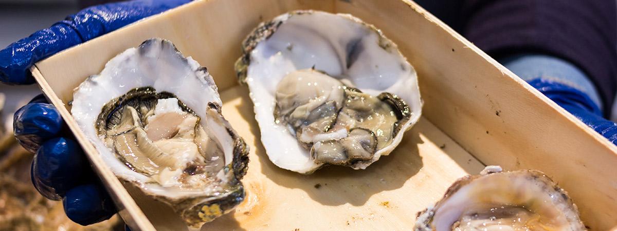 comprar marisco gallego ostras