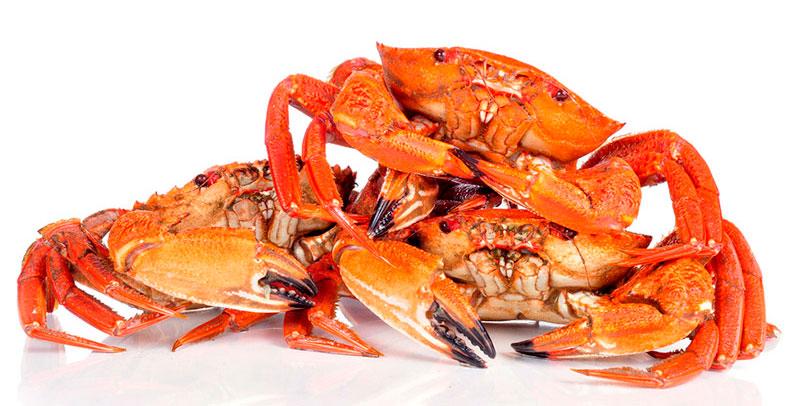 Mariscos crustáceos